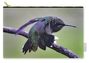 Aggressive Behavior - Ruby-throated Hummingbird Carry-all Pouch