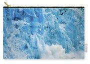 Alaska 4021 Carry-all Pouch
