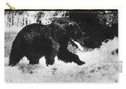Alaska: Brown Bear Carry-all Pouch
