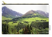 Alaska Scenery II Carry-all Pouch