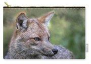 Alert Fox  Carry-all Pouch