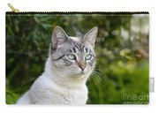Alert Tabby With Blue Eyes Carry-all Pouch