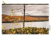 Algonquin Autumn Carry-all Pouch