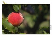 All Natural Peach Carry-all Pouch