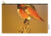 Allen's Hummingbird II Carry-all Pouch