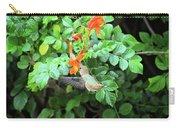 Allen's Hummingbird In Cape Honeysuckle Carry-all Pouch