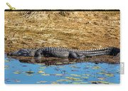Alligator In The Sun Carry-all Pouch