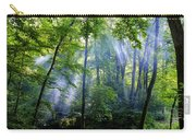 Allschwiler Wald Carry-all Pouch