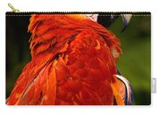 Aloof In Red Carry-all Pouch