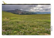 Alpine Meadow Before Mount Guyot Carry-all Pouch