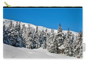 Alpine Winter Carry-all Pouch
