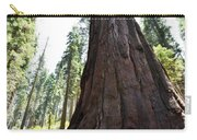 Alta Vista Giant Sequoia Carry-all Pouch