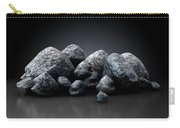 Aluminum Nugget Collection Carry-all Pouch