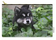 Alusky Pup Peaking Out Of Green Foliage Carry-all Pouch