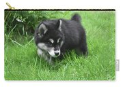 Alusky Puppy Dog Spotting A Toy To Play With Carry-all Pouch