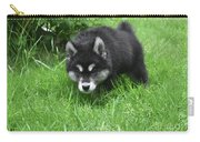 Alusky Puppy Stalking Through Tall Green Grass Carry-all Pouch