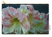 Amaryllis Amore Carry-all Pouch