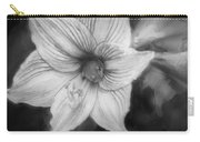 Amaryllis And Tree Frog Painted Bw Carry-all Pouch