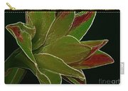 Amaryllis Art Carry-all Pouch