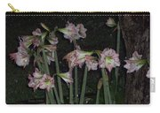 Amaryllis At Night After A Rain Carry-all Pouch