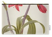 Amaryllis Brasiliensis Carry-all Pouch by Pierre Redoute