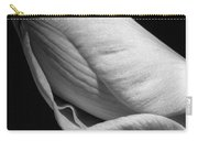 Amaryllis Bw Carry-all Pouch