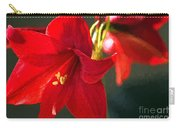 Amaryllis Digital Photoart Carry-all Pouch