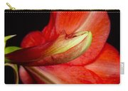 Amaryllis Flower About To Bloom Carry-all Pouch