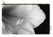 Amaryllis  Flower Close Up  Bw 12-27-10 Carry-all Pouch
