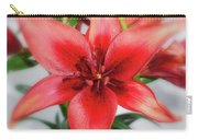 Amaryllis In Fading Carry-all Pouch