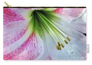 Amaryllis - Lily Carry-all Pouch
