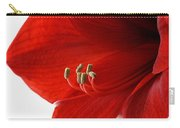 Amaryllis On White 3 Carry-all Pouch