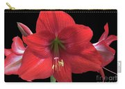 Amaryllis Petal Curls Carry-all Pouch
