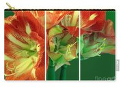 Amaryllis Triptych Carry-all Pouch