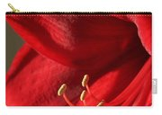 Amaryllis6689 Carry-all Pouch