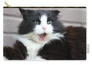 Amazement Cat Timothy Carry-all Pouch