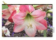 Amazing Amaryllis - Pink And White Apple Blossom Hippeastrum Hybrid Carry-all Pouch