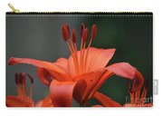Amazing Blooming Orange Lilies Flowering In A Garden  Carry-all Pouch