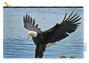 American Bald Eagle Sets Down On Fish Carry-all Pouch