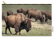 American Bison 5 Carry-all Pouch by James Sage