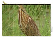 American Bittern Looking Up Carry-all Pouch