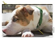 American Breed Puppy Carry-all Pouch