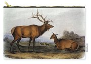 American Elk, 1846 Carry-all Pouch