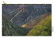 American Fork Canyon Carry-all Pouch