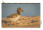 American Oystercatcher Chick Carry-all Pouch