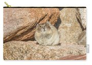 American Pika Focuses On The Camera Carry-all Pouch