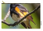 American Redstart Portrait Carry-all Pouch
