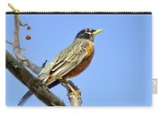 American Robin - 1 Carry-all Pouch