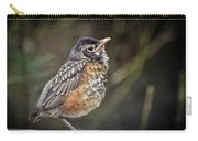 American Robin Fledgling Carry-all Pouch