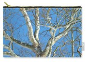 American Sycamore - Platanus Occidentalis Carry-all Pouch